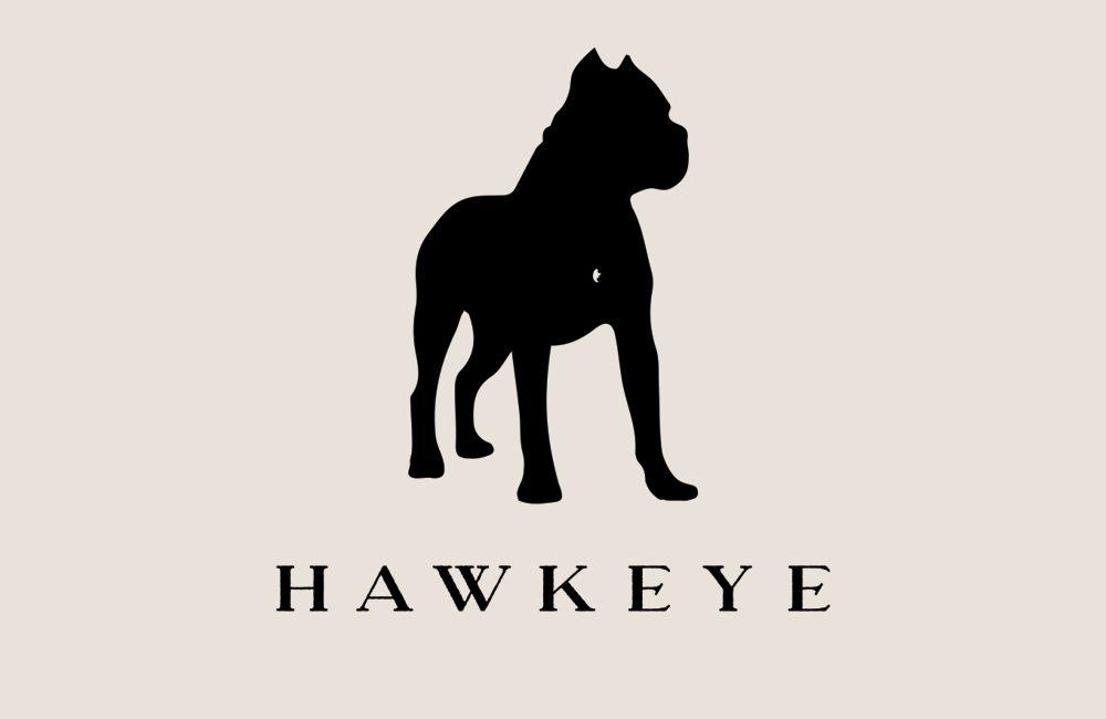 Hawkeye Identity