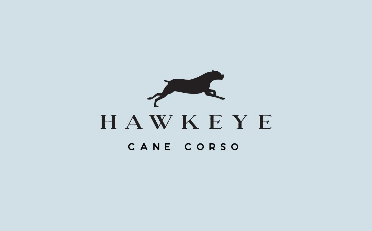 Hawkeye_CorsoLogo