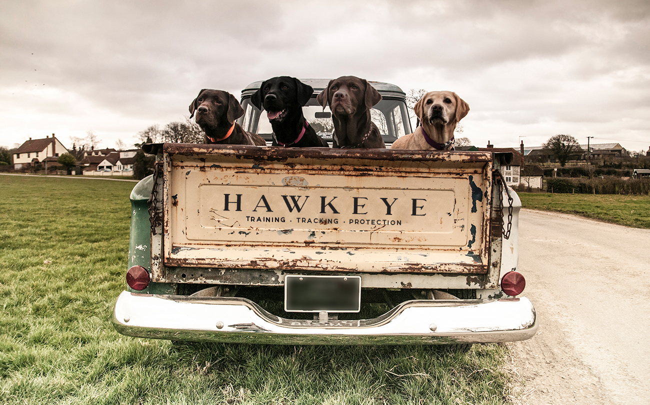 Hawkeye_Labs